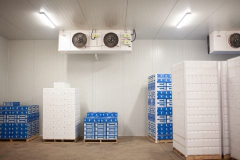 Refrigeration Projects -